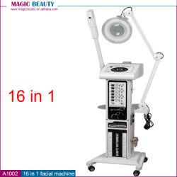 16 in 1 Multifunctionele Apparatuur van de Salon van de Schoonheid in Doubai voor de Behandeling van het Gezicht en de Zorg van de Huid