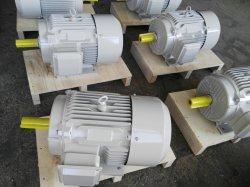 Ie1 Ie2 Ie3 에너지 절약 삼상 전동기 (380V 400V 415V 460V 575V 50Hz 60Hz)