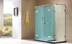 Porte de charnière du châssis en acier inoxydable salle de douche douche double compartiment