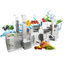 С Водой системы кровообращения купол фрукты овощи стиральной машины
