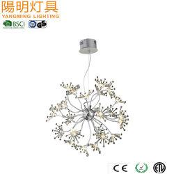 Lâmpada Pendente de arte popular para decoração Casa Flor Luz Lustre