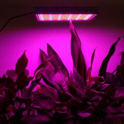 Commerce de gros 2009 LED rouge/bleu 200W Plante croître Panneau lumineux à LED