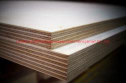 La fabbrica HPL/Formica della Cina ha ricoperto il prodotto di legno della piega della lista di prezzi del compensato di Plywood/MDF /Bloackboard /OSB