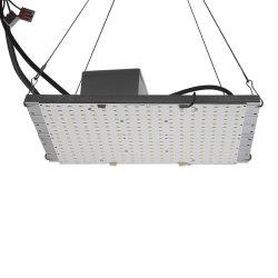 熱販売の屋内プラント温室Hlgは550 V2 Lm301b LED軽い120W Quantumのボードを育てる