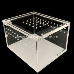Neuester Acrylreptilterrarium-Rahmen-Großverkauf