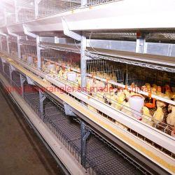 La gabbia di batteria automatica del pollo da carne della strumentazione del pollame di migliori prezzi