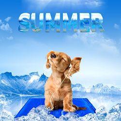 كلب باردة محبوب كتلة يبرّد هلام محبوب حصيرة لأنّ فصل صيف