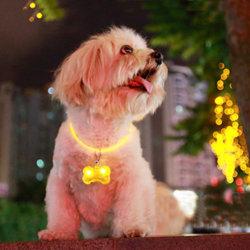 كلب يتوهّج [لد] يضاء أمان لين بطاقة عظم مضيئة بلاستيك يخزر [فلش ليغت] مدلّاة