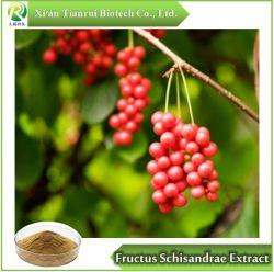 Schisandra chinensis/Fructus Schisandrae Auszug, Puder