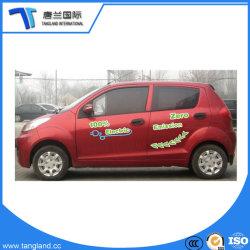 OEM van China de Mini Slimme Elektrische Auto van Fabrikanten
