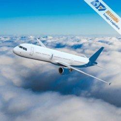 De Diensten van de Logistiek DDP van de Luchtvracht aan Us/UK/Europe/Germany/France/Nepal wereldwijd met Cargadoor Shenzhen