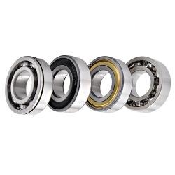 SKF/NSK/NTN/Timken/のブランドの高水準は工場深い溝の玉軸受かモーターベアリング6000seriesを所有する
