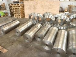 ISO 9001 voor Roestvrij staal Gerolde Ringen