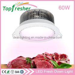 Esclusivo faretto a LED incassato da 8 pollici da 50 W per Supermarket