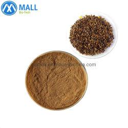 Prix en vrac Cassia organiques Tora Seed Extract en poudre