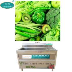 オゾン果物と野菜の洗濯機の空気泡野菜の洗濯機