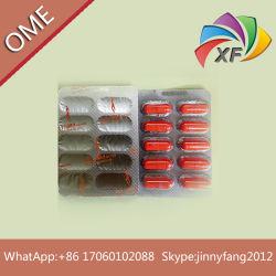Forme du corps sous étiquette privée OEM slimming capsule diète pilule de perte de poids
