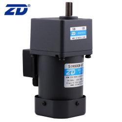 ZD 110V/220V 60W 마이크로 전자식 흡기 AC 기어 감속 모터