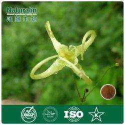 Medicamentos Erétil ervas Cabra córnea extrato de plantas daninhas