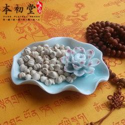De Bol van Sichuan Fritillary/rank-Leaved Fritillary Bulb/Bulbus Fritillariae Cirrhosae