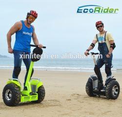 По Бездорожью Scooters два колеса электрической нагрузки на скутере с ручкой