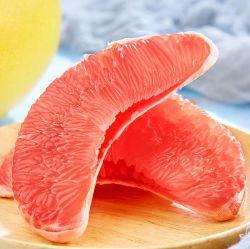 Pomelo fresco Proveedor de cítricos procedentes de China