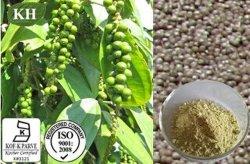 Hoogste Kwaliteit & het Natuurlijke Uittreksel van de Zwarte peper (5%-98% Piperine)