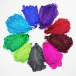 6-8-10-12 인치 - 고품질 다색 매끄러운 푹신한 자연적인 타조 기털 다채로운 무희 훈장 Plumag