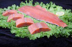 De Filets/de Gedeelten/de Lapjes vlees van de Zalm van de vriend