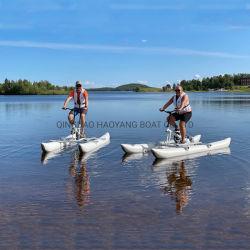 다양한 색상의 맞춤형 크기의 호수 놀이 장비를 판매합니다 무거운 PVC 수상 스포츠 셀프