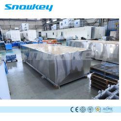 Bloco Conteinerizado Snowkey Máquina de Gelo Gelo Sistema Vegetal