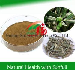 Extrait de plante Nutural extrait de feuilles d'olive No CAS 32619-42-4 Olleuropein