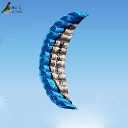Venda grande quantidade 2,5M programável de linha dupla energia acrobática papagaios
