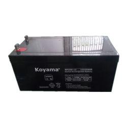 12V25ahによって密封される鉛酸蓄電池VRLA電池AGM電池Np250-12