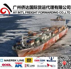 الصين عمليّة شحن [شيبّينغ جنت] من [شنزهن] إلى سنغال