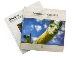 Tamaño A5 de lujo en libro impreso encuadernado con cubierta de papel de buena calidad