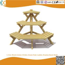 3 Coin Tier bois fleur usine de l'affichage de l'échelle du peuplement étagère de rack