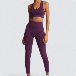 Großverkauf passt Komprimierung-Set-Frauen-hohe Taillen-Yoga-Klage an