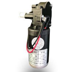 믹서를 위한 영원한 자석 플라스틱 벌레 변속기 DC 모터 24V