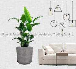 Fornitura in fabbrica nuovo design alta qualità idroponica ceramica smaltata dritta Vaso di plastica di fiori Plant Pot Garden Planter Eco-friendly Pot a
