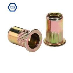 Écrou de rivet avec filetage à tête large corps moleté (INSERT) de l'écrou plaqué zinc jaune