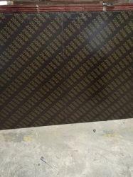 Marineplexのフィルムは合板のポプラのコアWBP接着剤に直面した