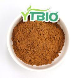 Extracto de hierba de Nigella Sativa el extracto de semilla negro 10% Thymoquinone