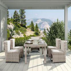Im Freienfreizeit-Entwurfs-Tisch-Rattan-Garten, der Möbel für Hinterhof mit Stuhl speist