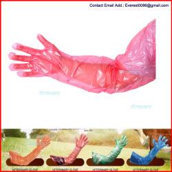 Bras long de l'examen vétérinaire Vet des gants jetables à usage vétérinaire