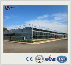Солнцезащитная шторка Net PE материал УФ рассматривать пластиковую пленку выбросов парниковых газов для выращивания овощей/90GSM--260GSM