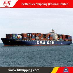 Consolidatie LCL van China aan Verschepende Vracht van het Strand van Amerika de Lange