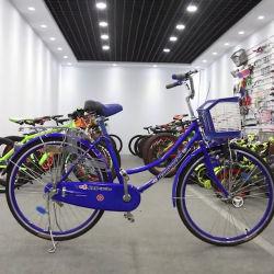 Bicycle Steel Cheap City工場Baskerおよび後部ラックを持つ女性のための直接女性バイク