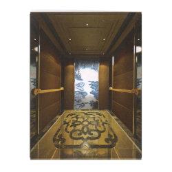 Asia FUJI comfortabele VVVVF Golden Mirror Home Lift personenlift