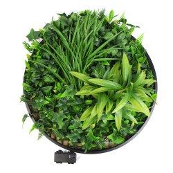 precio de fábrica de 20 pulgadas de diámetro colgante Artificial enmarcado de pared vegetal